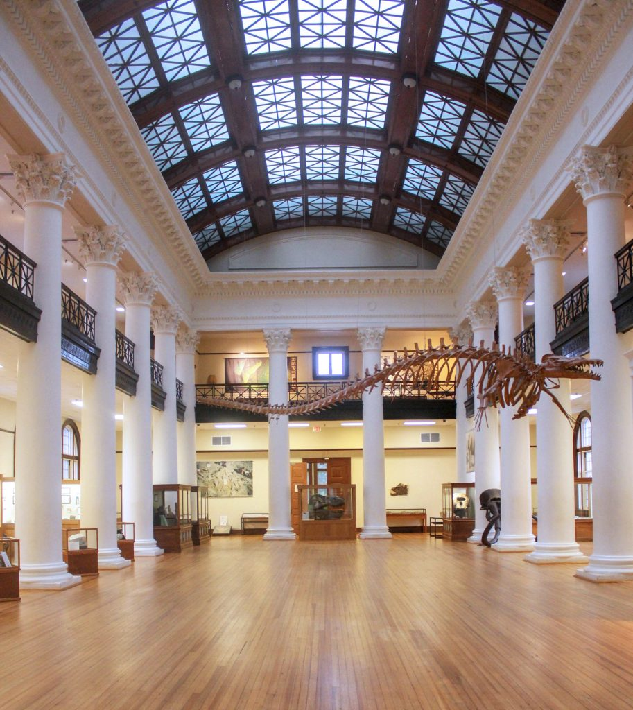 Smith Hall's Grand Gallery
